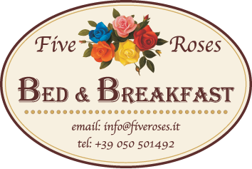 Five Roses - Bed & Breakfast - Pisa - Italy